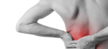 Hofteartrosepasienter har ofte ryggplager