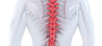 Fysioterapi ga like god effekt som ryggoperasjon