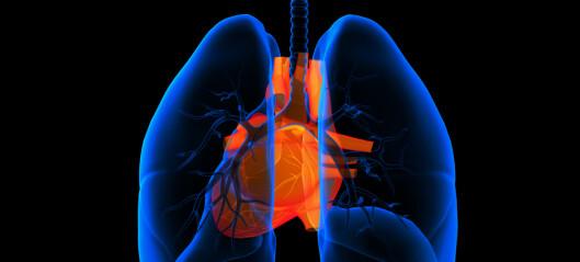 Bare de dårligste får lungerehabilitering