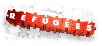 Oppretter pool av helsepersonell for asylsøkere