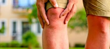 - Økt blodgjennomstrømming demper smerter