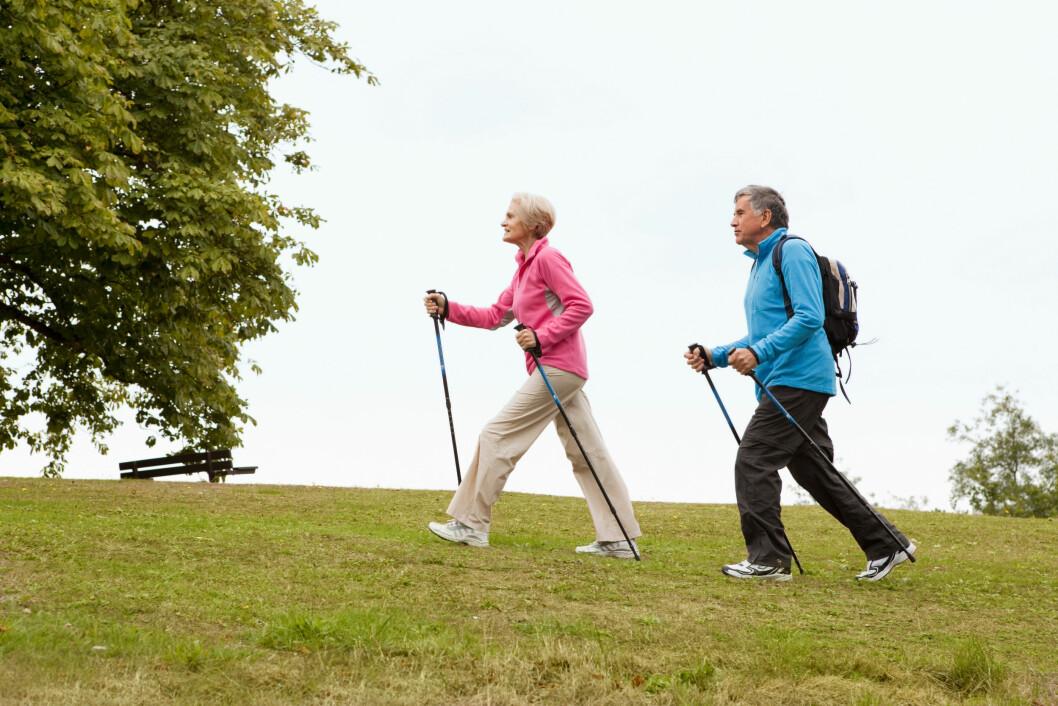 For eldre er gangtrening den mest populære aktivitetsformen, viser en nye studie fra Generasjon 100 ved NTNU. Det kan være en god idé å lage flere turstier, mener forsker Line Skarsem Reitlo.
