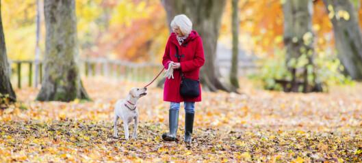 Et bedre liv med KOLS – erfaringer med en lavterskelmodell for lungerehabilitering  i kommunehelsetjenesten