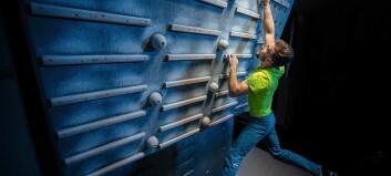 Smerter og hevelse i PIP-ledd hos ung klatrer